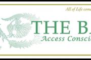 Access Bars with Sheli